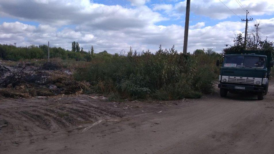 Полігон зелених відходів. Фото: Суспільне