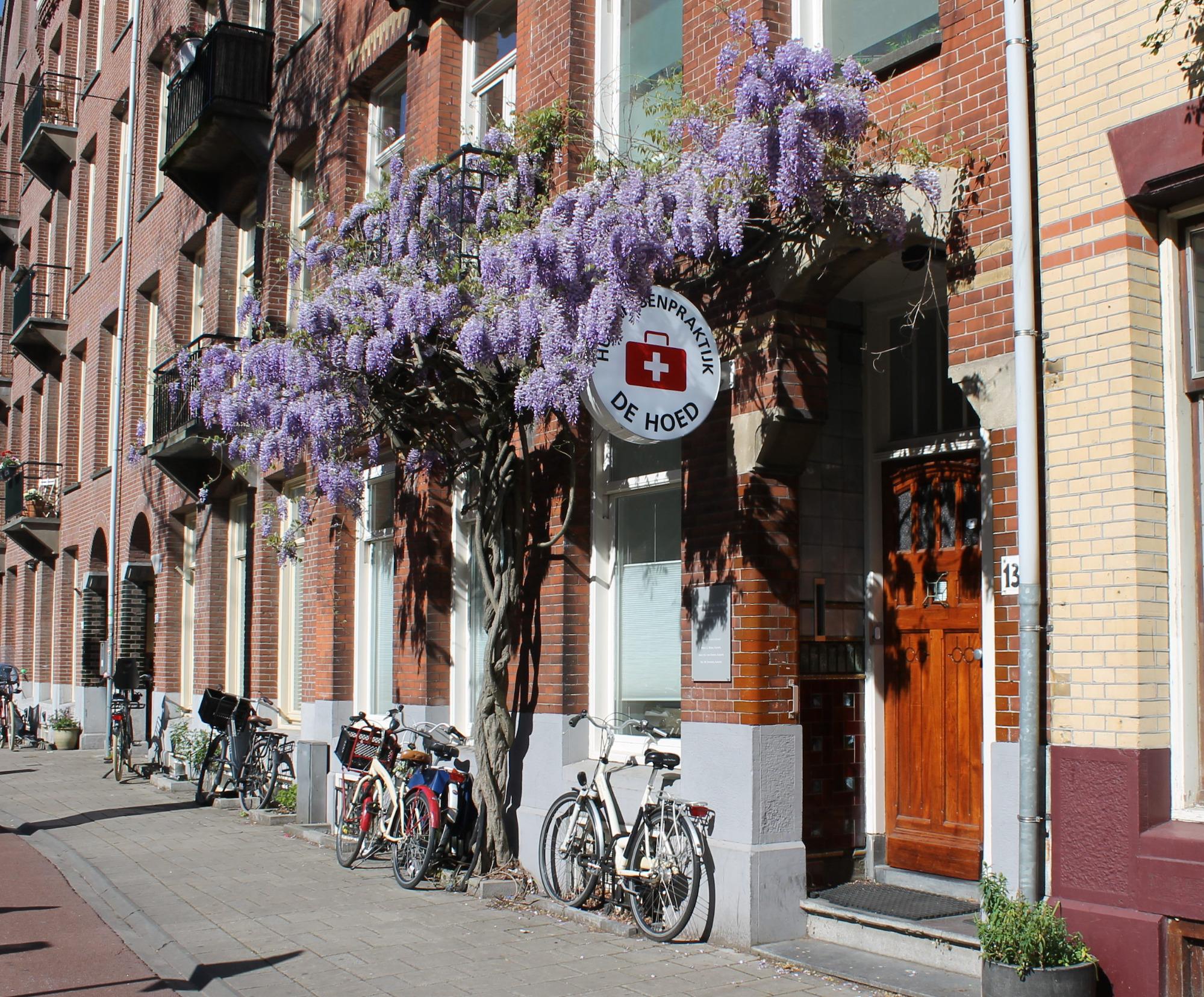 Так виглядав кабінет мого першого сімейного лікаря в Амстердамі. Фото: dehoed.nl