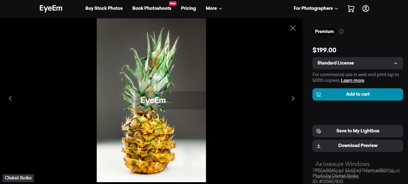 Скріншот з фотостоку Олексія Бойка